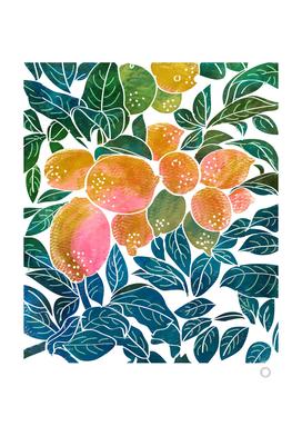 Lemons V2