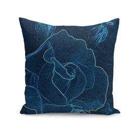 blue rose contour