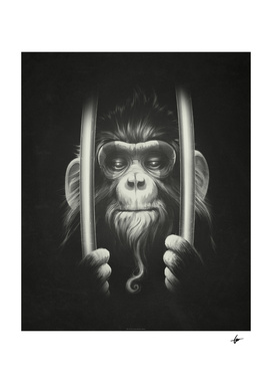Prisoner II