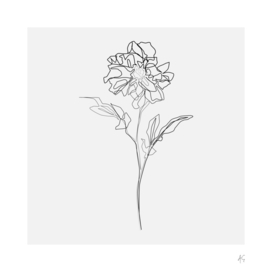 Dahlia Flower Print (Grey Background)