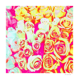 bouquet of pink rose pattern texture abstract background