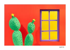 Mexican Windows 2