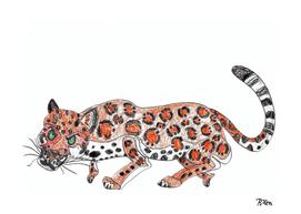 Orange Jaguar