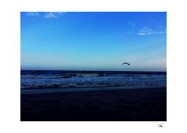 Lone Birdie