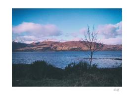scotland d