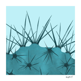 Teal Cactus Close-up Design
