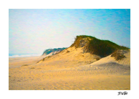 Outer Banks Dune
