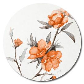 flowers / 65