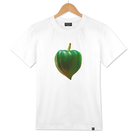 Heart-Shaped Squash
