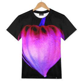 Heart-Shaped Squash - ColorNegative Edition