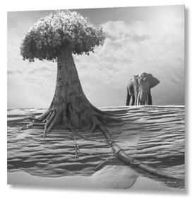 Elephantree