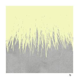 Concrete Fringe Yellow