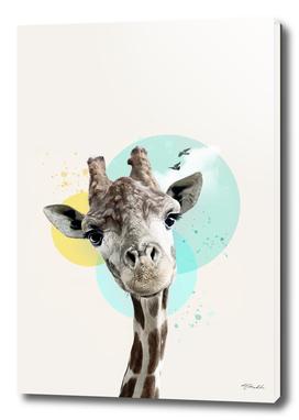 Brooding  giraffe with circles