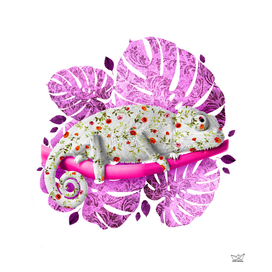 Flowers in the Chameleon