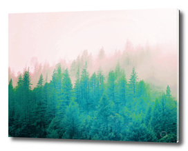 Forest Fog V3