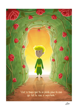 Little Prince and the Roses (FRENCH VERSION)