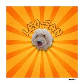 Boomgoo's Leo-San 3