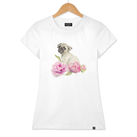 Pug and Peonies | Watercolor Illustration