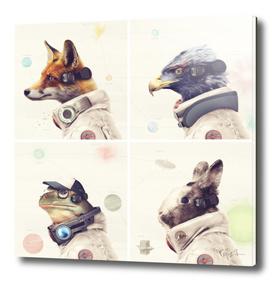 Star Team - Legends of Lylat