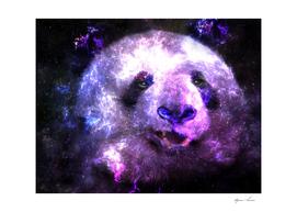 Cute Galaxy Panda Bear