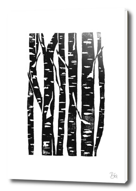 Woodcut Birches Black