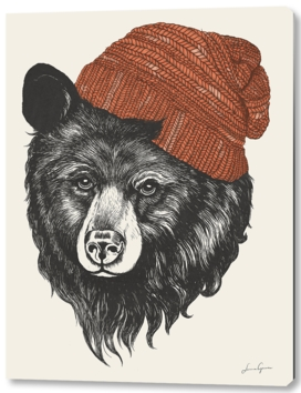 zissou the bear