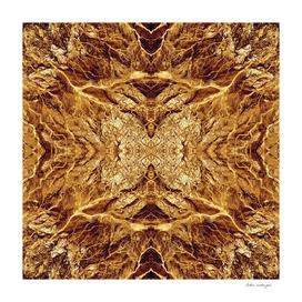 Orange Path Symmetry S1