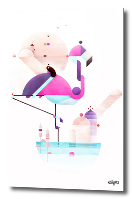 Placido flamingo