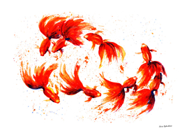 Eight Dancing Goldfish