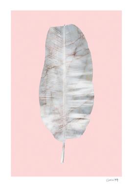 White Marble Banana Leaf on Pink Wall