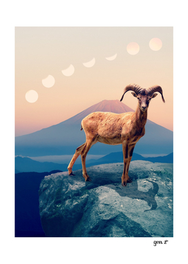 Mountain Ibex by GEN Z
