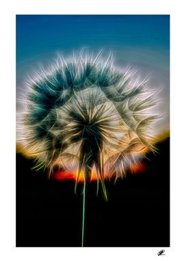 Dandelion close up photo neon