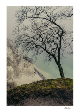 ON THE BRINK / Møns Klint, Denmark