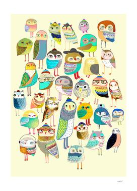 Owl Hundreds