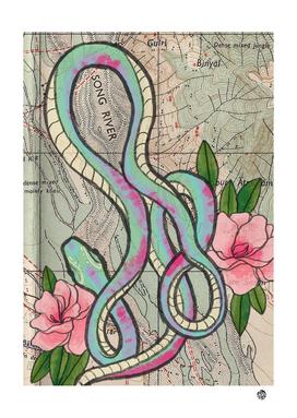 Snakes World