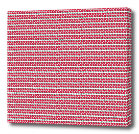 Strawberry Stripes Pattern - FullH/WHITE