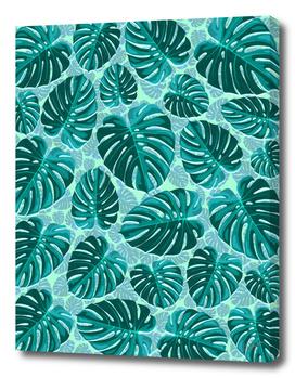 Tropical Leaf Monstera Plant Pattern