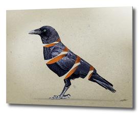 raven maker
