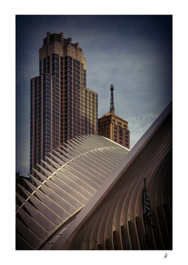 Ribs Of The Oculus in Lower Manhattan