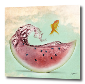 watermelon goldfish