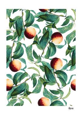 Fruit and Leaf Pattern