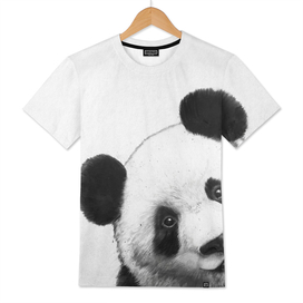 Peekaboo Panda