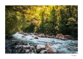 Beautiful Sun Light over Cleddan River, New Zealand
