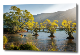 Learning to paddle at Glenorchy in New Zealand