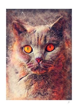 cat Gina