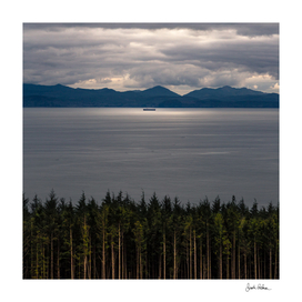 Trees, Sea, and Sun on the Vancouver Island Coast