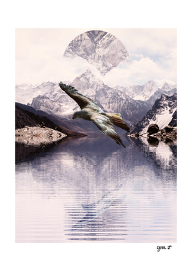 Raptor over a lake by GEN Z