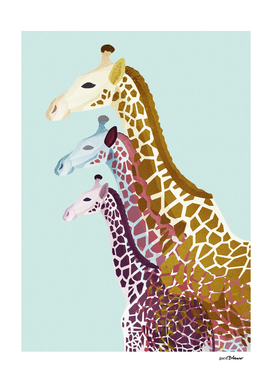 Giraffes in Mint