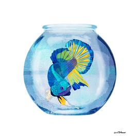 Fish Prisoner