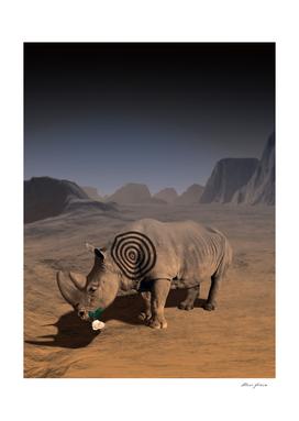 Goodbye Rhino